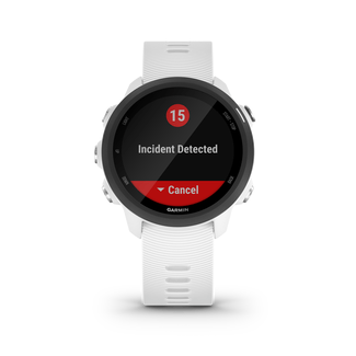 Forerunner 245 Music GPS, white/black