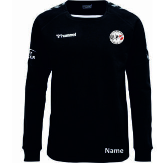 SG Ulm & Wiblingen HMLAUTHENTIC TRAININGS SWEAT, 116, black/white